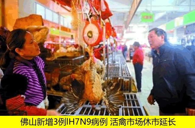 佛山新增3例lH7N9病例 活禽市场休市延长