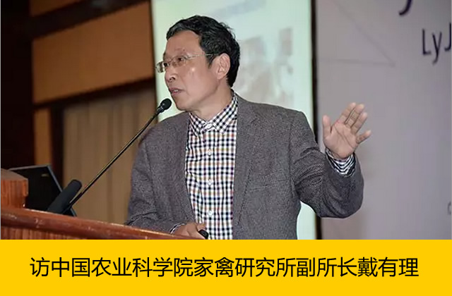 家禽业风险管理研讨会系列追述之一:访中国农科院家禽研究所副所长戴有理