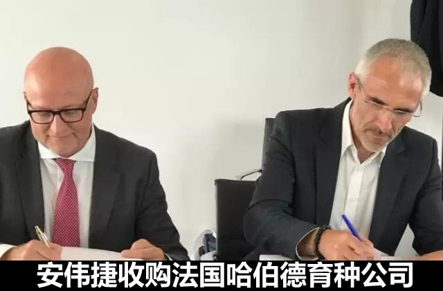安伟捷收购法国哈伯德育种公司 提升其全球肉种鸡市场地位