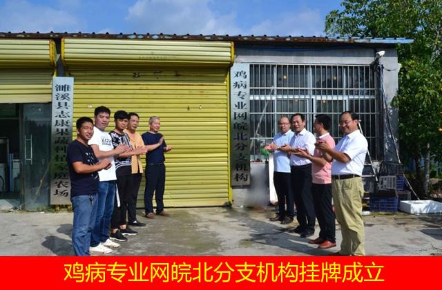 鸡病专业网皖北分支机构挂牌成立