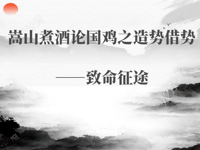 嵩山煮酒論國雞之造勢借勢——致命征途