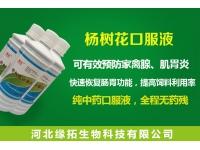 杨树花口服液—用于家禽雏鸡开口、防治肠炎、腺肌胃炎效果显著!!