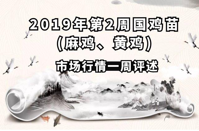 2019年第2周国鸡苗(麻鸡、黄鸡)全国各地区市场行情一周评述及前瞻(1月7日-1月