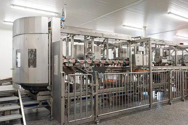 梅恩引领中国高速肉鸡加工新标准